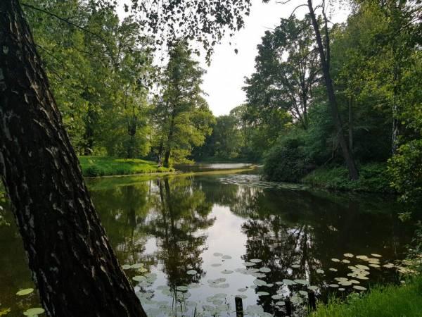 Zabytkowy Park Zamkowy w Pszczynie